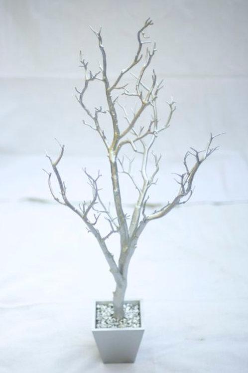 'Birch' Silver Tree