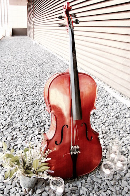 'Lemoncello' - Cello Prop