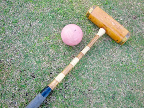 'Croquet Anyone?' - Croquet Set