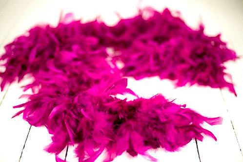 'Come Up And See Me Sometime' - Purple Feather Boa