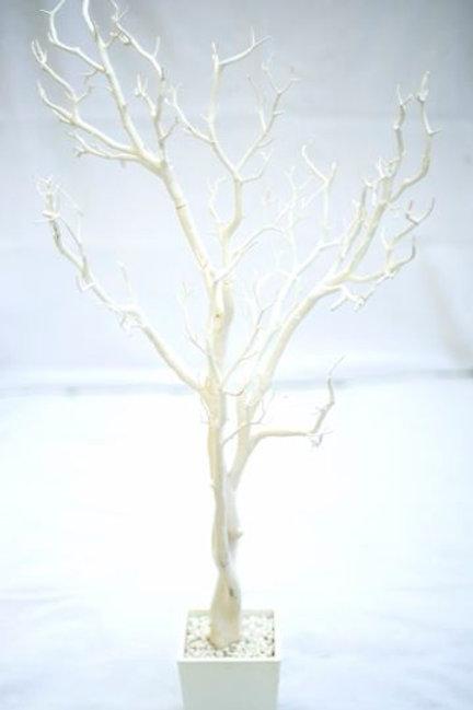'Oak' Large White Tree