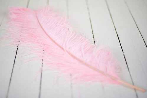 'Feather Me Pink'  - Pale Pink Ostrich 60