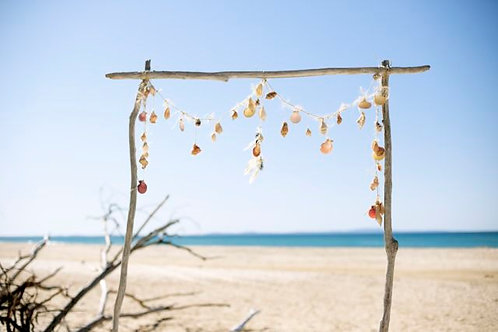 'Shellfish' - Driftwood & Shell Arch