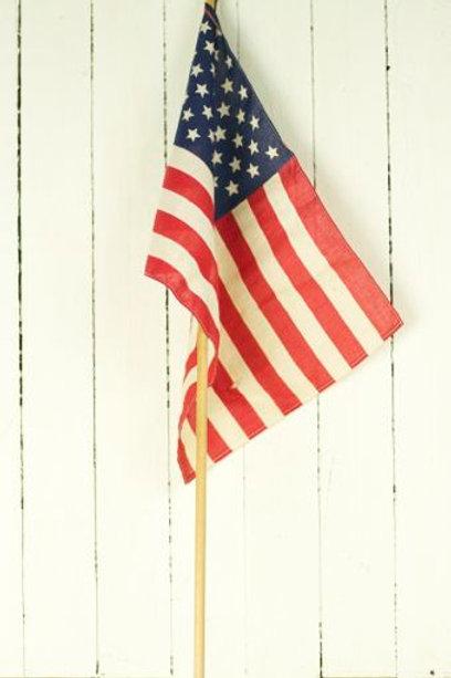 'Johnson' Vintage American Flag