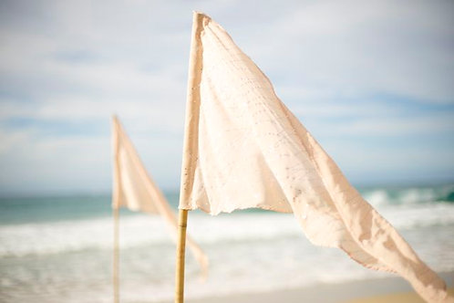 'Blush' Small Blush Pink & Spakle Pennant Flags