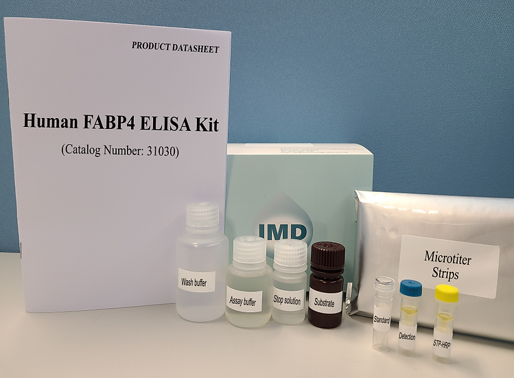 Human Fatty Acid Binding Protein 4 (FABP4) ELISA Kit