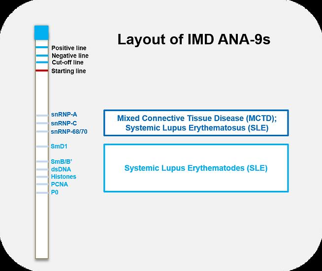 ANA-9s (Ready-to-use ImmunoBlot Strips)