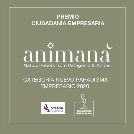 HxN is Celebrating it's Sister B Corp Animaná's Award Win for New  Paradigm Entrepreneur 2020!