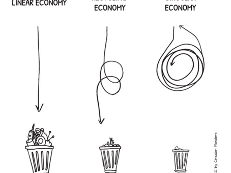 La Re-Educación de los Profesionales de la Moda Para una Economía Circular