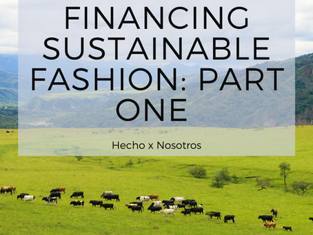 Financing Sustainable Fashion: Part 1: A Brief Overview of Sustainable Finance