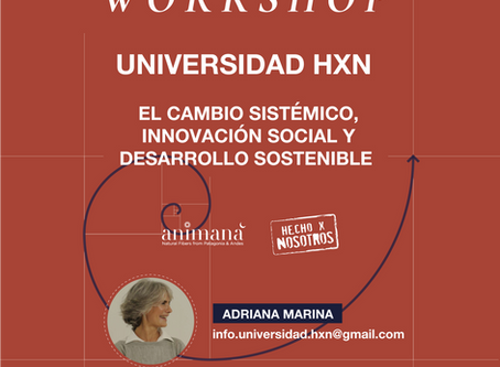 Universidad HxN Workshop: Cambio Sistémico, Innovación Social y Desarrollo Sostenible