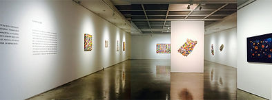 Roy yariv Exhibition at Dooin art Gallery