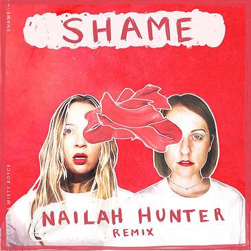 Shame Remix.jpeg