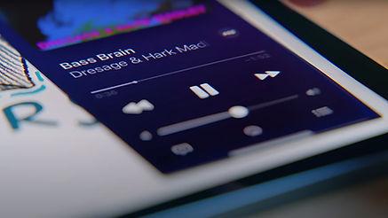 bass-brain.jpg