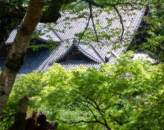 HASEDERA TEMPLE 長谷寺