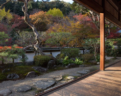 SYORYAKU-JI TEMPLE 正暦寺
