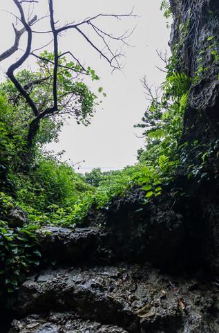 0100-025_okinawa.jpg