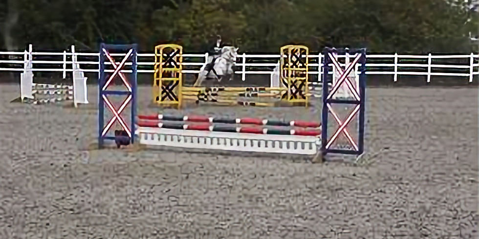 Area 5 SJ and Style jumping qualifier
