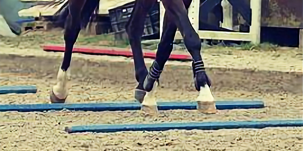 Arena Eventing / Polework Clinic