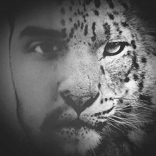 avatars-000136832286-lxj8ir-t500x500