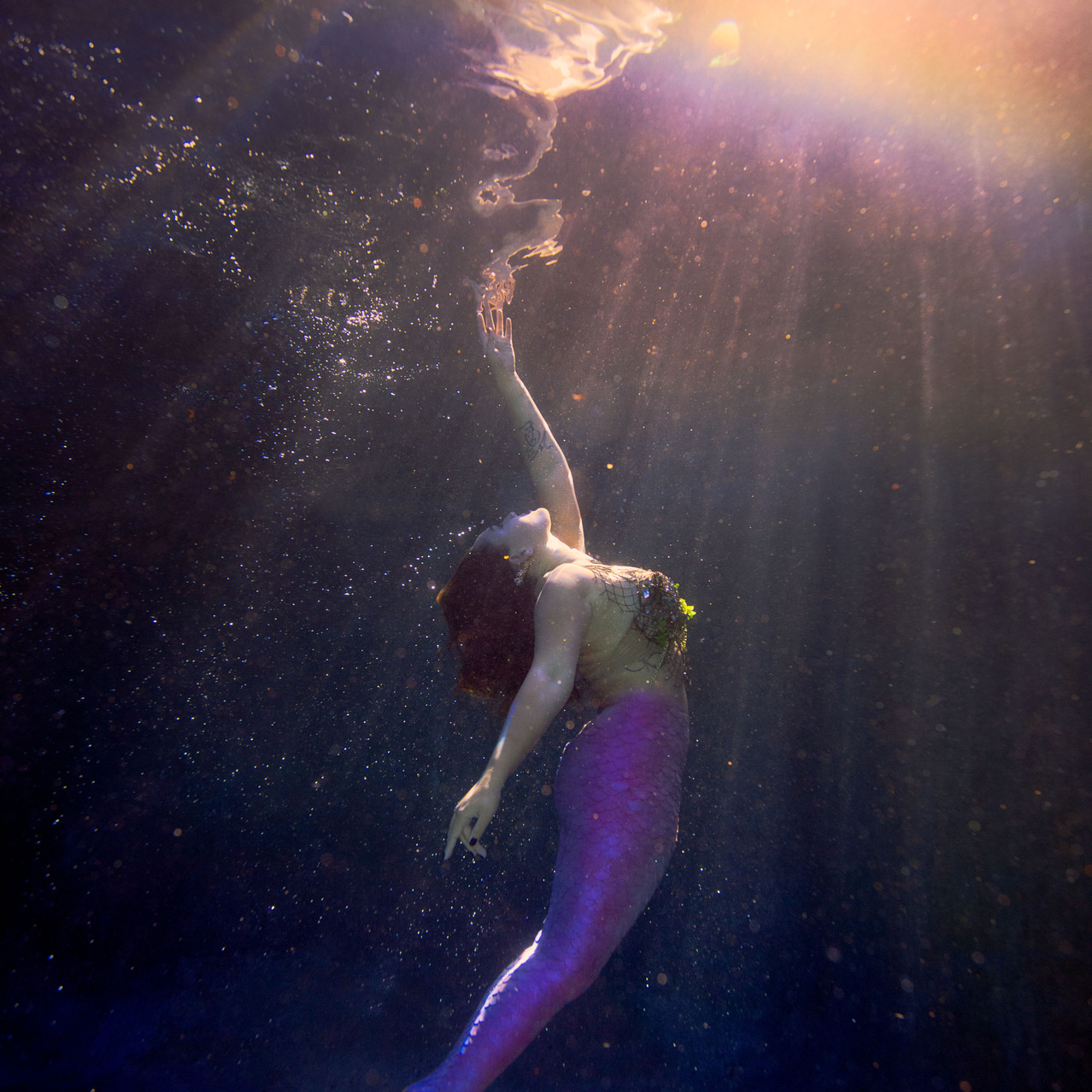 Mermaid Tessie