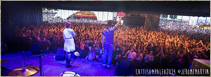 Catfish en concert à Paléo Festival Nyon en juillet 2014