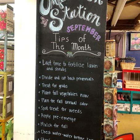 September Tips