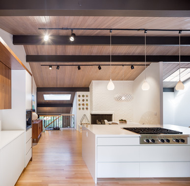 Vanillawood-Design-Build-Mid-Century-Modern