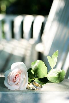 Rosen und Ringe