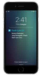 Nest_Motion Notifications.png