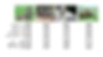 ECCV 2012: Augmented Attribute Representations