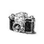 Заказать услугу фотографа