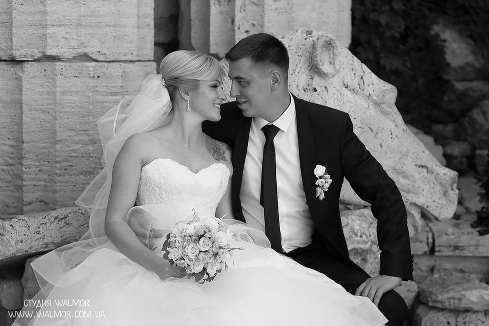 оператора на свадьбу Киев