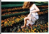 Flower background scene