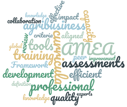 wordcloud tools and curricula 2.png