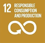 Sustainable Development Goals Responsible Consumption and Production