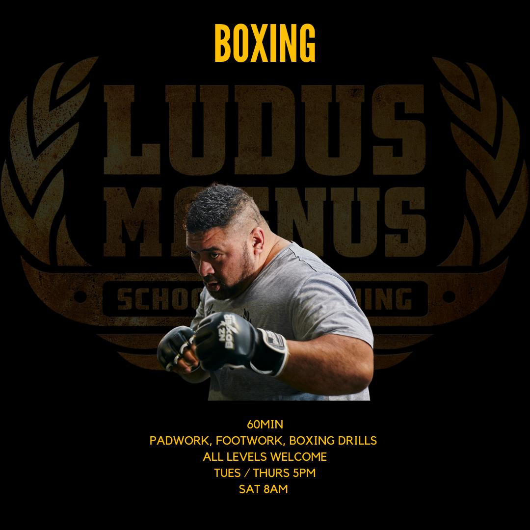 Ludus Boxing