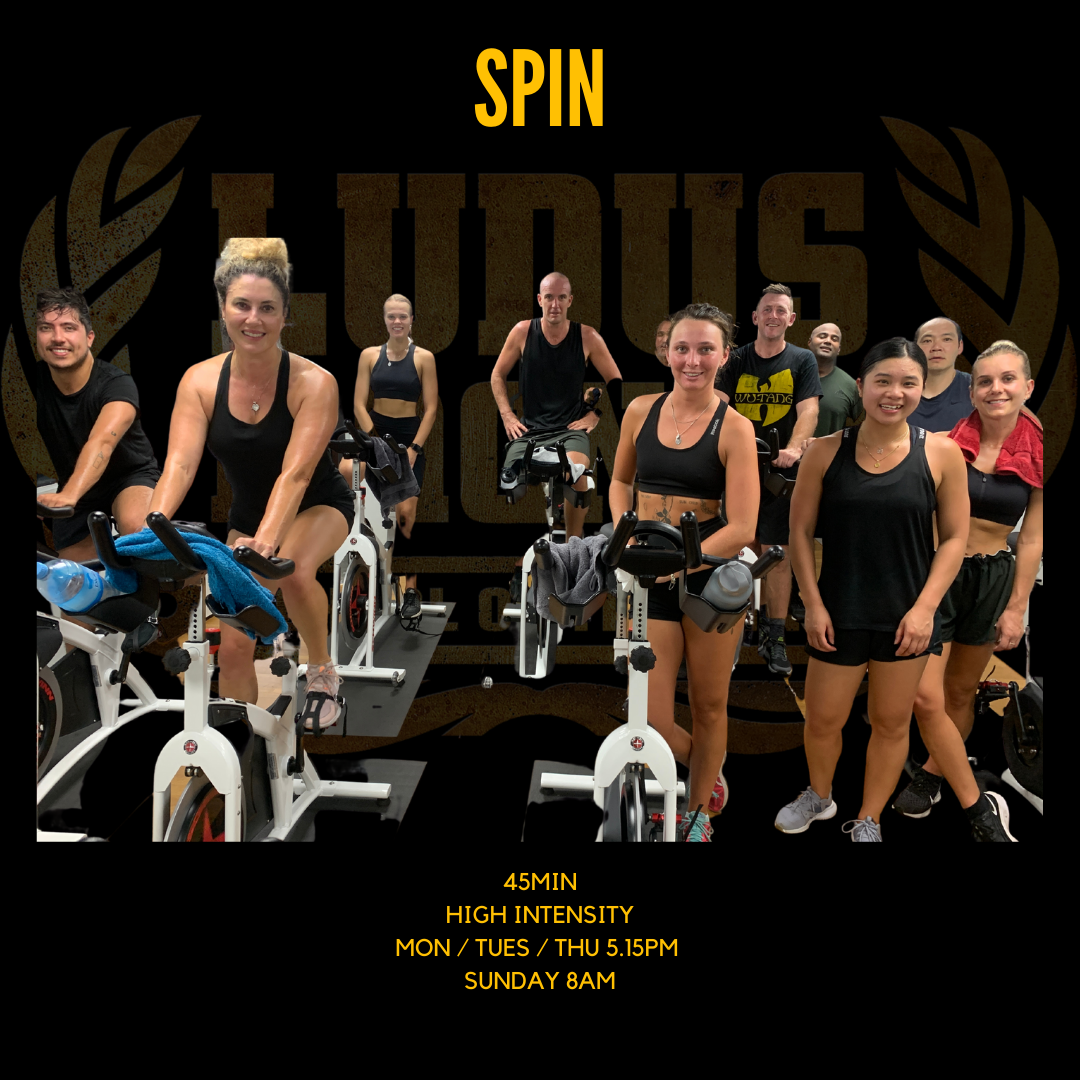 Ludus Spin