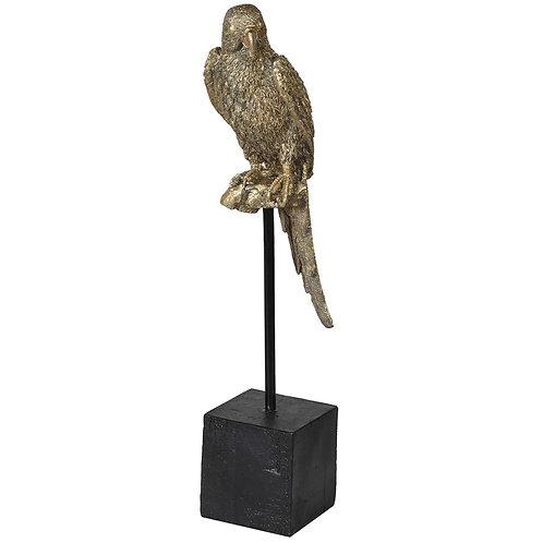 Golden Parrot on Perch