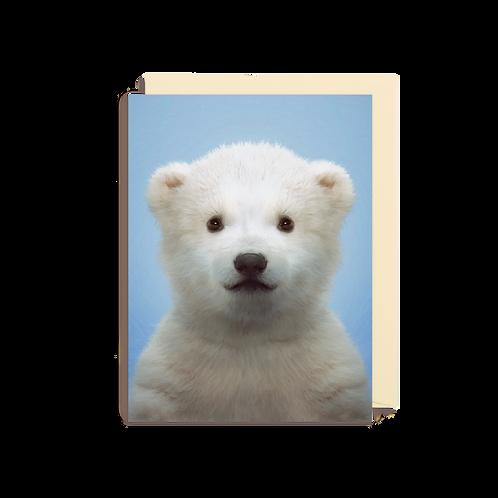 Polar card