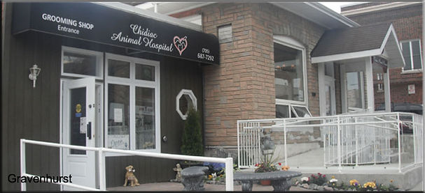 Gravenhurst clinic photo.jpg