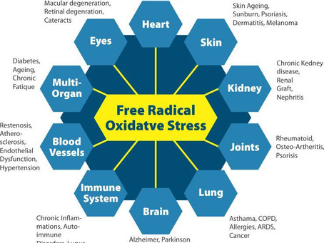 Oxidative Stress and Your Health!
