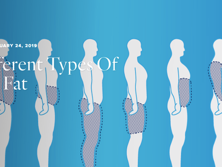 6 Different Types of Body Fat