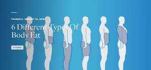 6 Different Types Body Fat