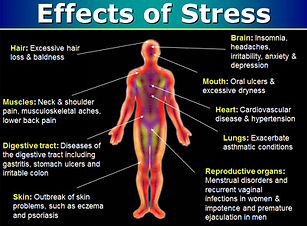 Stress-Tips-Calm-Your-Mind-Heal-Your-Bod