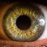 Iris analysis fo health