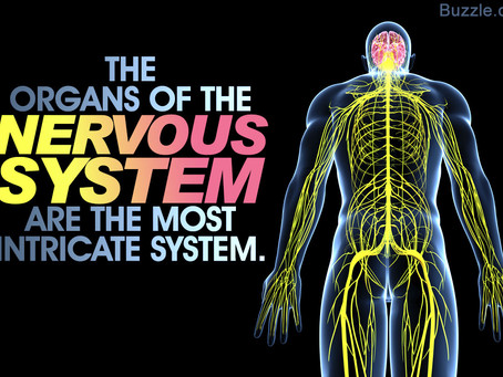 15 Ways to Activate the Vagus Nerve
