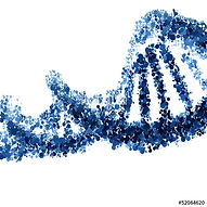 Heal your DNA