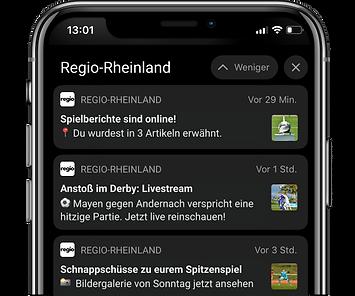 Regio Rheinland Fußball Rheinlandliga