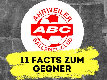11 Facts zum kommenden Gegner: Ahrweiler BC